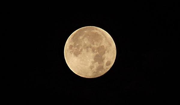 Full Moon by ray7399