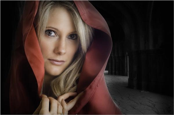 Lady In Red by Hoffy