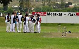 Meerkat Park