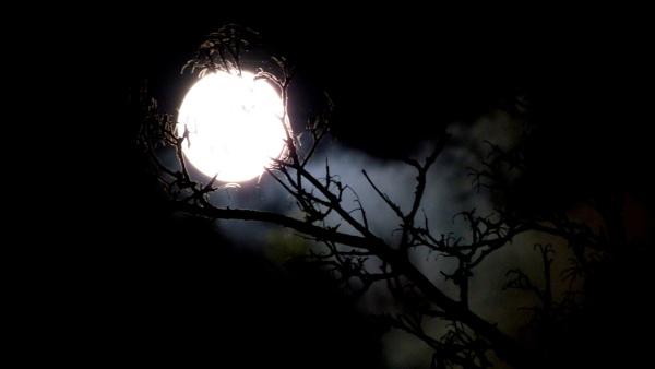 Spooky moon on bonfire night. by ejakzzz