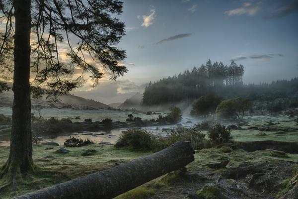 Bellever Forest by Devon_Sunsets