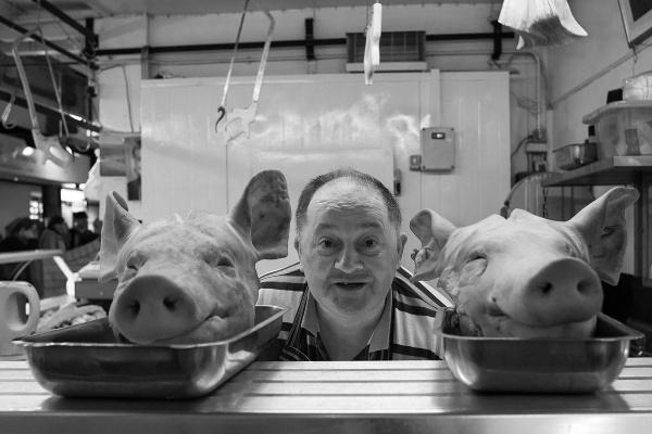 Happy as a pig :) by ladigit