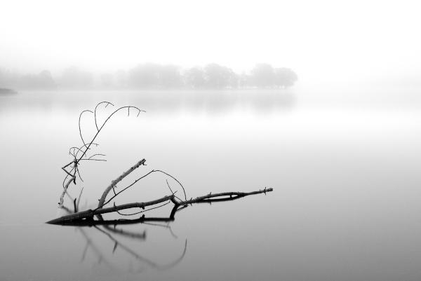 Tranquillity - Loch Ard by richardburdon