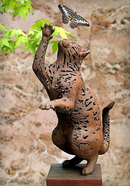 Tabby Cat by pamelajean