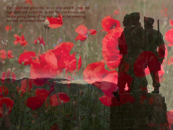 \'Lest We Forget\' by flatfoot471