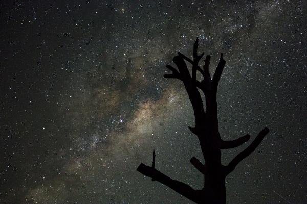 Bathurst  Stars by Brindamour