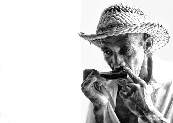 Play the harmonica by ikhodos