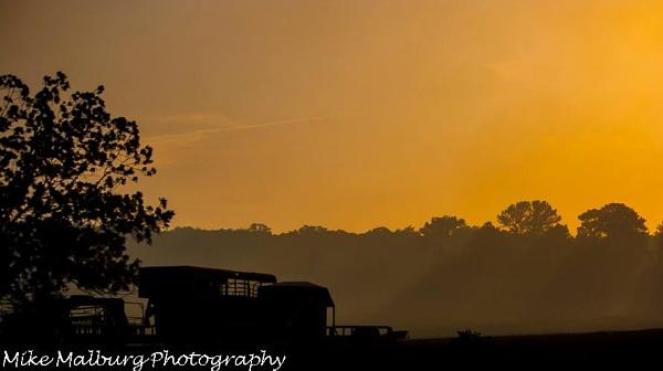Sun fire by mike_malburg