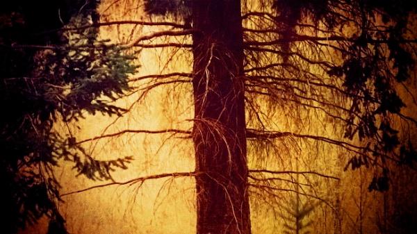 lit by a fiery glow by enfys