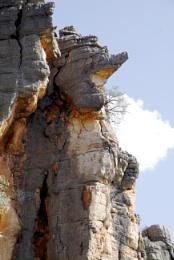CROCODILE ROCK AT GEIKIE GORGE WESTERN AUSTRALIA