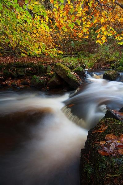 Flowing through Autumn by martin.w