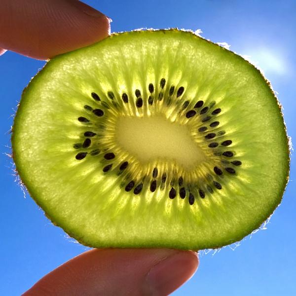 Backlit kiwifruit by Bluewave42