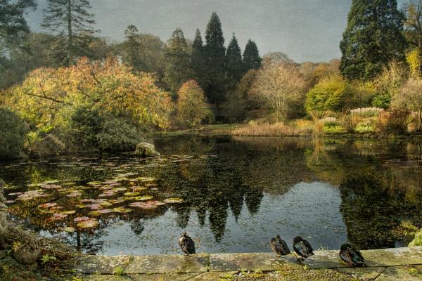 Gresgarth Gardens by WeeGeordieLass