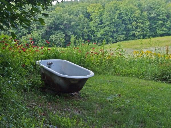 Summer in Maine # 75 by handlerstudio