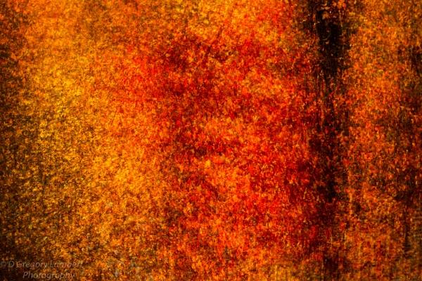 Autumn Impressionism by gregl