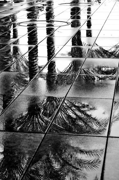 It never rains in Arizona.... by ChristopherG