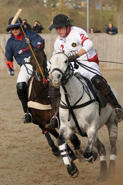 Prancing horse -America V England AEPC Hickstead by ChristopherG