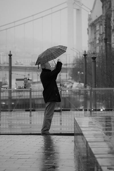 Rain photography by mikan