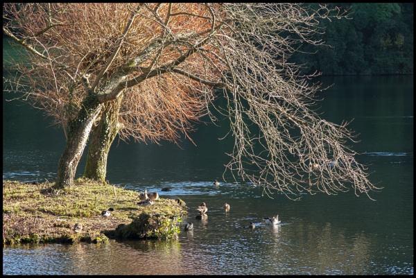 Stourhead by bwlchmawr
