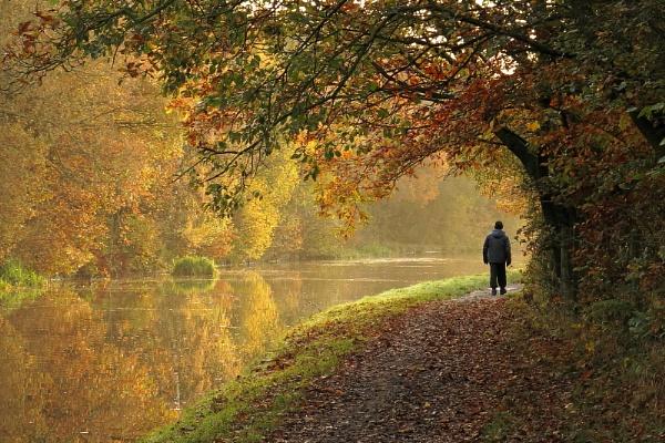Autumn Walker by togwood