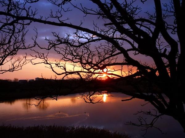 Sunset by netta1234