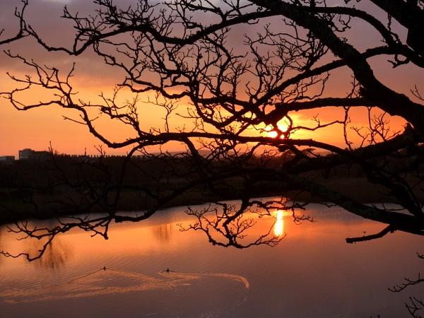 Sunset 3 by netta1234