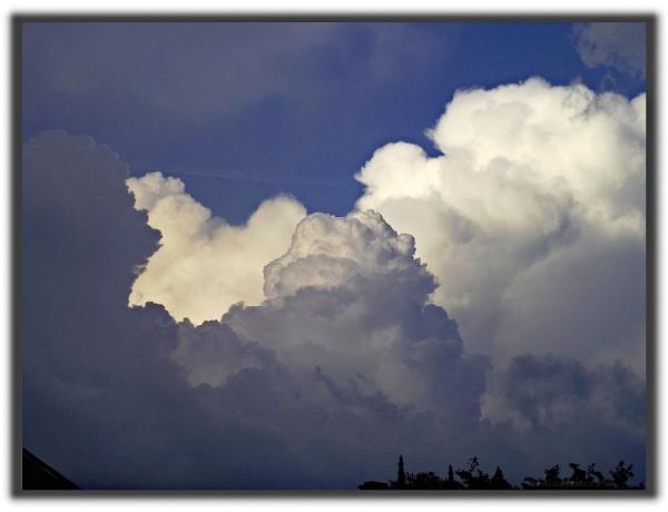 Cumulus Congestus by gss