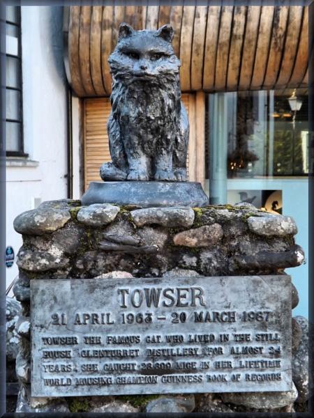 Towser by alancharlton