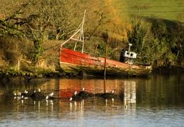 Ramelton Wreck