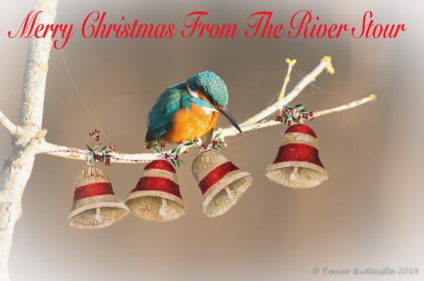 Merry Christmas 2014 by Trev_B