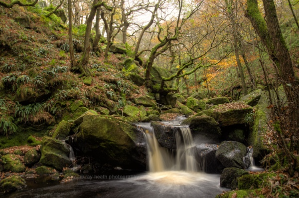 Padley Gorge 1...2014 by RayHeath