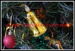 Happy Christmas Everybody.