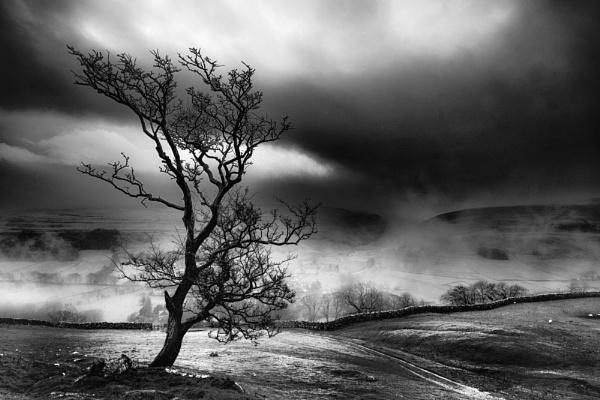 Dawn Breaks by gerainte1