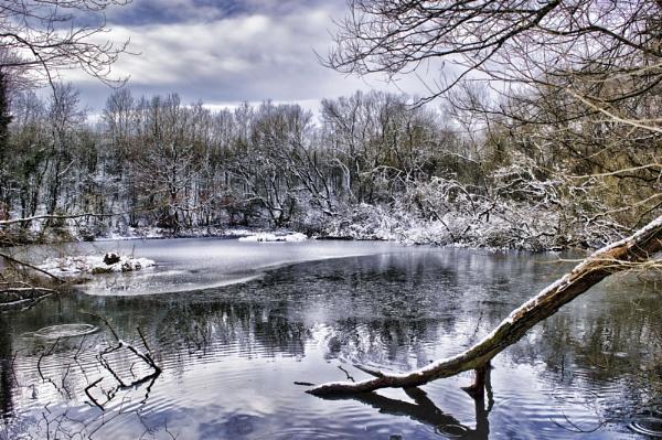 penny town ponds by stevegilman