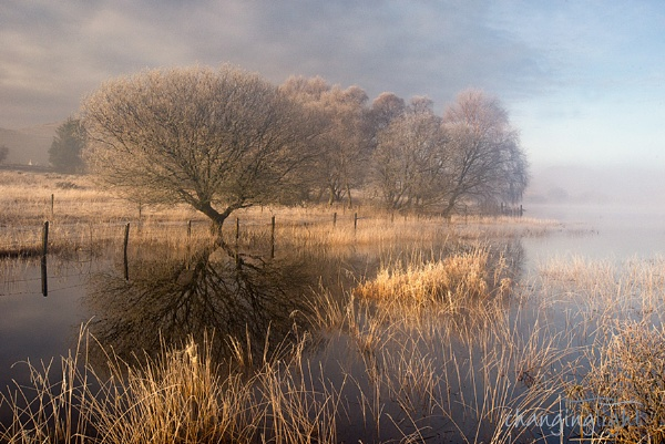 Waiting for the mist to clear.... by andylock