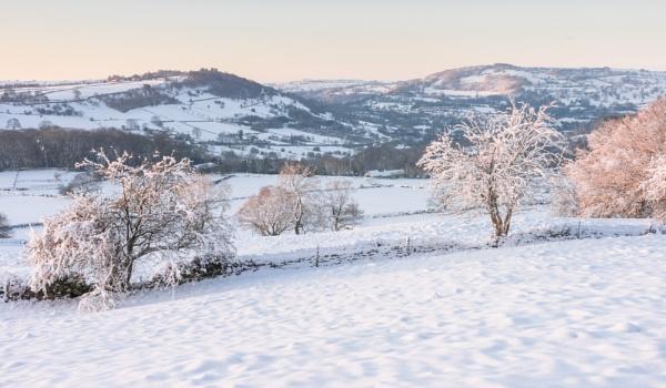 Snow Field by DalesLass