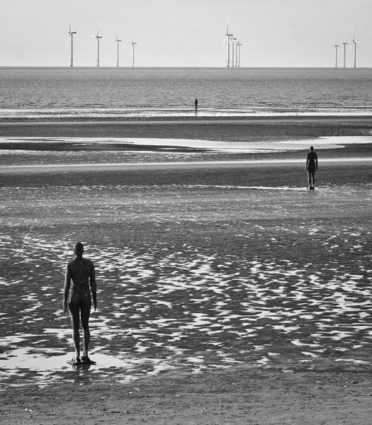 Winds O'er Sunlit Seas