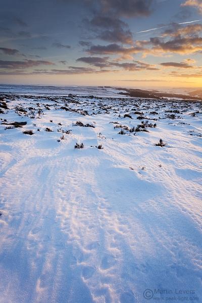 Snow Field by martinl