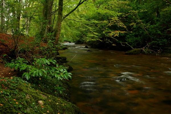River Calder by TobesOfHades