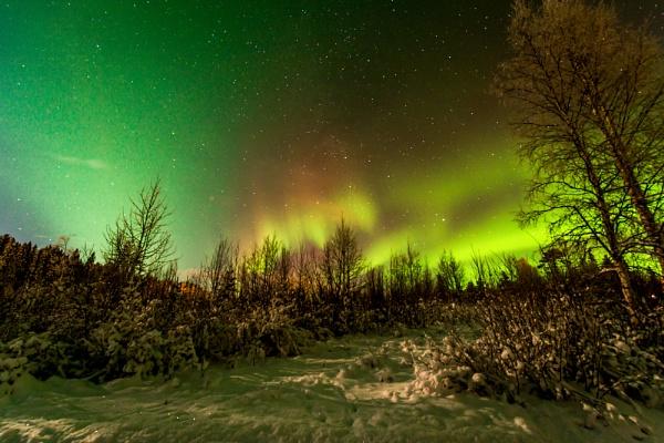 Northern Lights II by TyChee