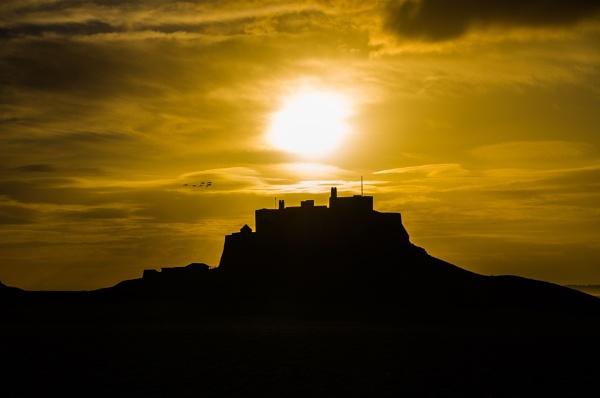 Lindisfarne Castle by icphoto