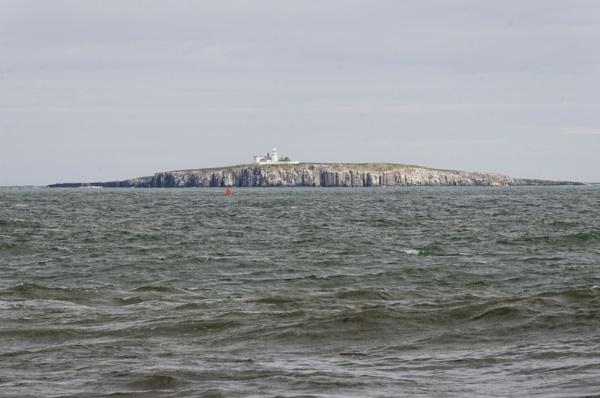 Inner Farne Island by ikett