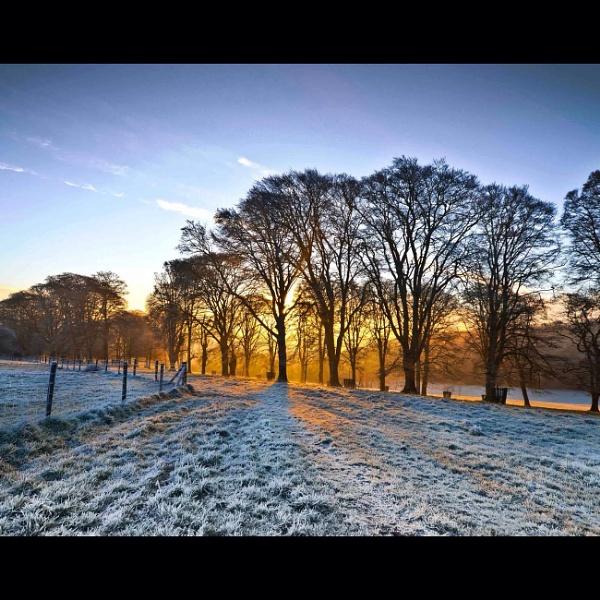 Frosty morning by kirrasurf