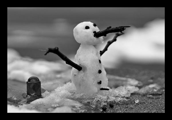 Snowman by jovanovic
