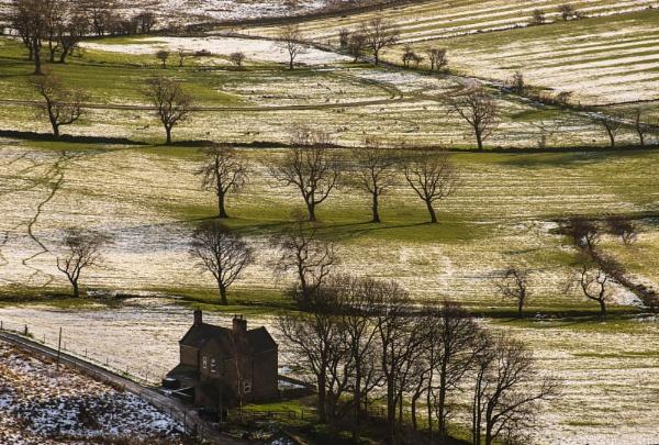 Winter Scene by Trevhas