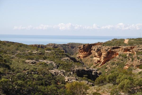 BADJIRRAJIRRA WESTERN AUSTRALIA by BRITCHIE