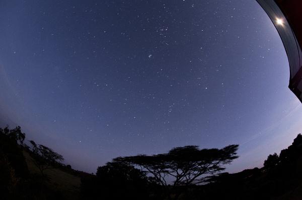 African Dawn by rontear