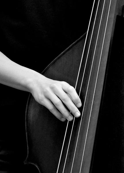 String Bass by tonyng