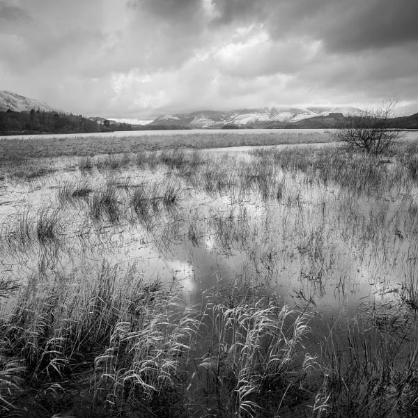 Derwentwater Marshes by HowieR