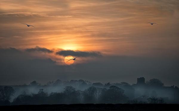 """"""" A Misty Sunset """""""